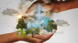 Cuáles son las consecuencias de un impacto ambiental