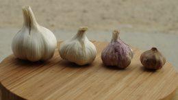 Para qué sirve el ajo negro