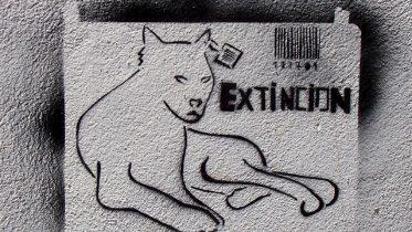 Qué es la extinción