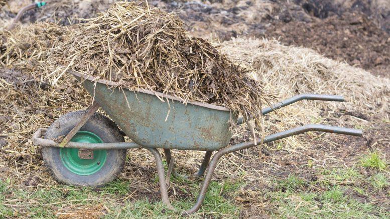 Qué Son Los Residuos Agrícolas