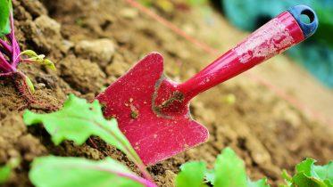 Mejores herramientas y utensilios para el jardín