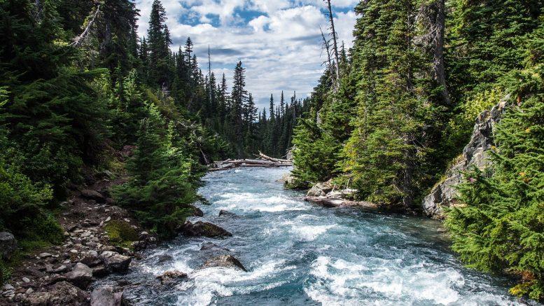 Cuáles son los ríos más importantes del mundo