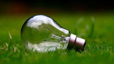 5 acciones para cuidar el medio ambiente
